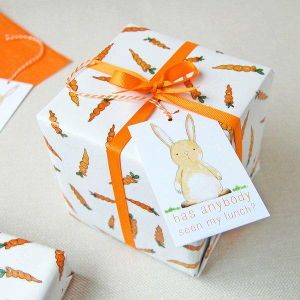 quelquun-qui-a-vu-mon-dinner-lapin-carrots-offrir-un-cadeau